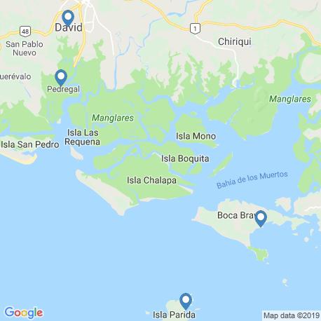 Карта рыбалки – Дэвид