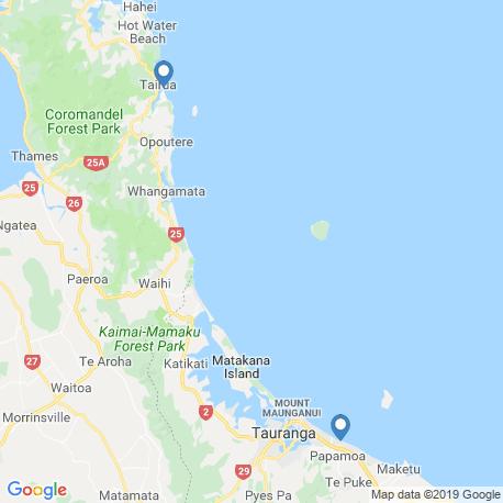 map of fishing charters in Bay of Plenty