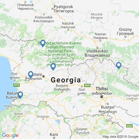 map of fishing charters in Georgia