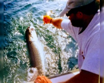 Florida Reels Fishing Charters – Tarpon