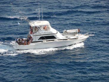 Adrenaline Tours Curacao - Alexia