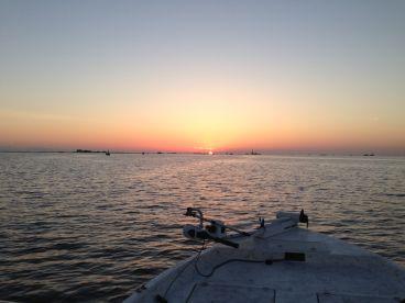 Shrimp Trawl Charters