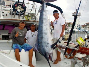 Big Marlin on the Magnifico