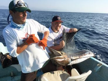 Surfandfishing  Charters
