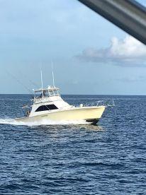 Hunter Charters - 48' Ocean Yacht