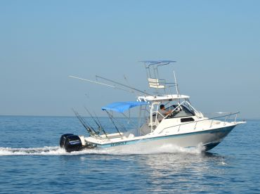 Vallarta Fishing Machine - Seawolf