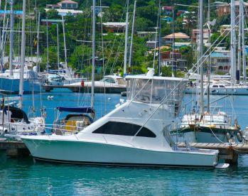 Sport Fishing Grenada
