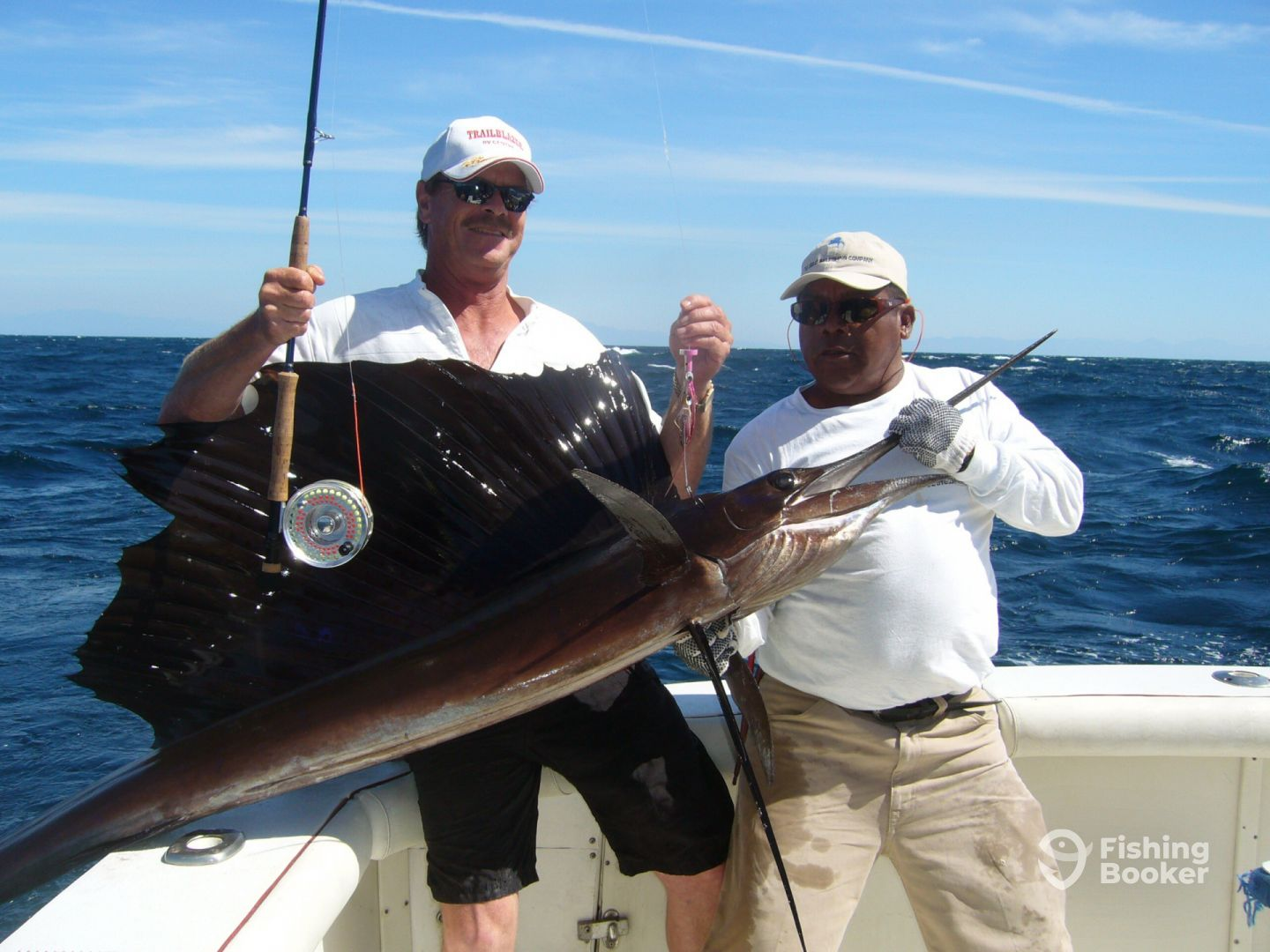 Sailfish on the fly