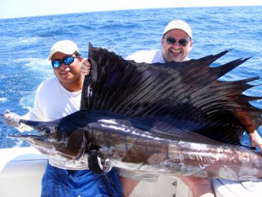 Great Sailfishing in Guatemala