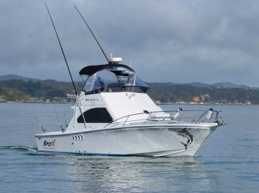 SpotX Fishing Charters - Screaming Reels