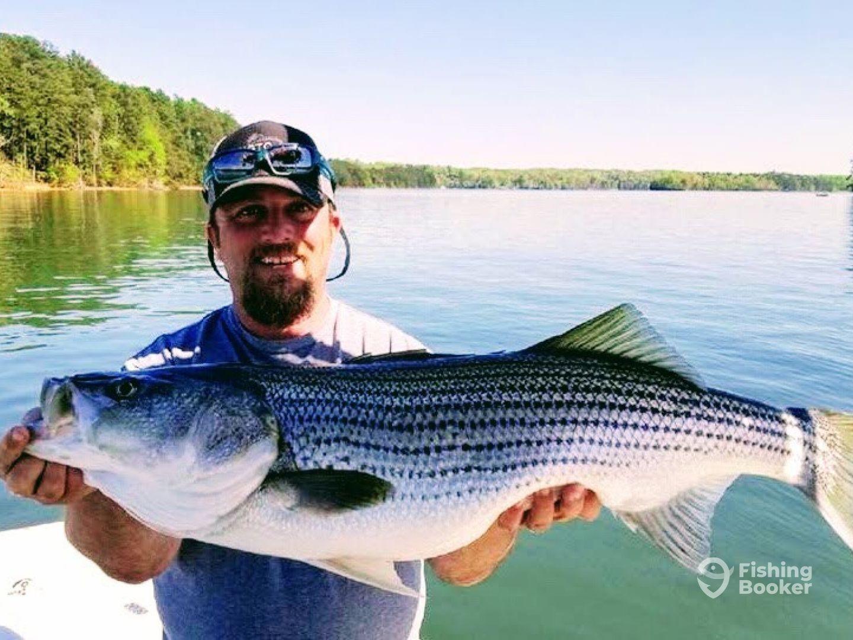Mad Gillz Fishing
