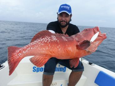 Monsters Fishing Guide - Maldives