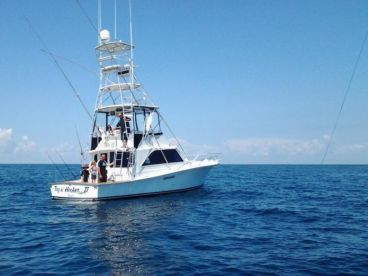 Try N' Hooker Fishing Charters