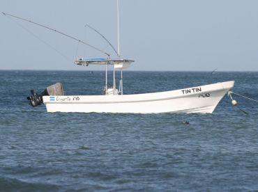 Colorline Charters Sportfishing , Playa Gigante