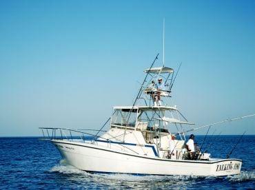 Talking Fish - 38' Topaz Express