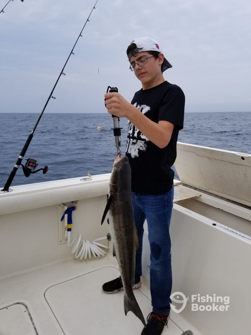 A nice cobia on the inshore reef!