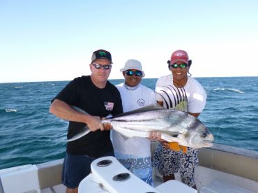 Roosterfish ready to be released!