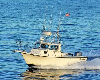 Sealutions Sportfishing LLC