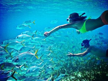 Get To Know Belize – Fishing & Snorkeling