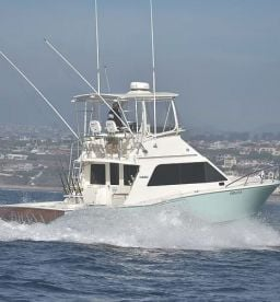 Mariner's Yacht Charters - 35' Cabo
