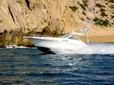 Cabo Sport Fishing Fleet – 50' Cabo