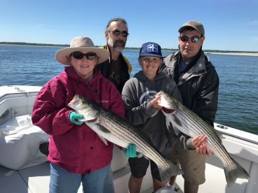Cape Cod Bay Outfitters