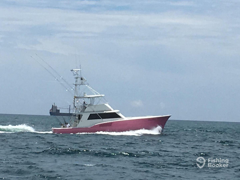 Fox Sea Sport Fishing