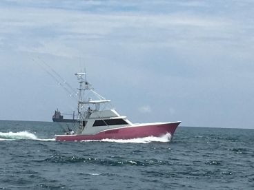 Fox Sea Sport Fishing