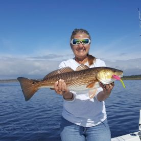 Salty Tails Charters