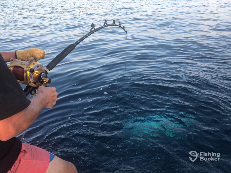Tunaholic Fishing Charter