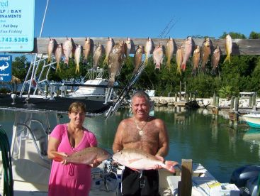 Typical reef catch of snapper, grouper, hogfish