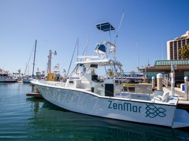 Zenmar Offshore Action