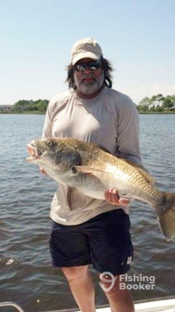 Fishfinder Charters Phil Rooks Fort Walton Beach Fl
