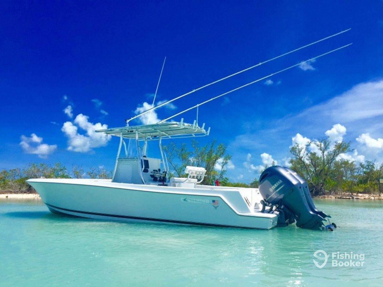 Suncoast Fishing Adventures