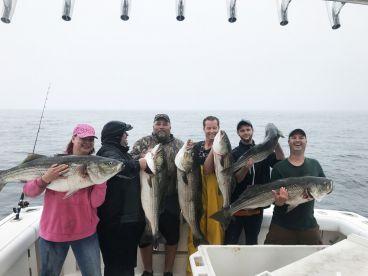 Bagman Fishing Charters