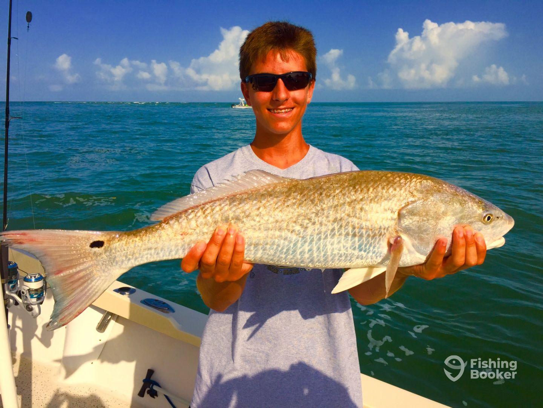 Nice Redfish