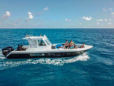 Orca Maldives