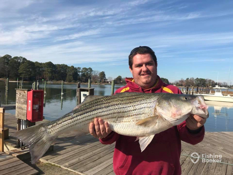 AquaMan Sportfishing - Reedville (Reedville) - Updated ...