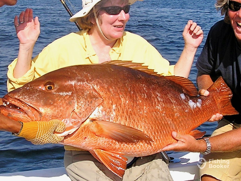 Cubera Snapper are common catch