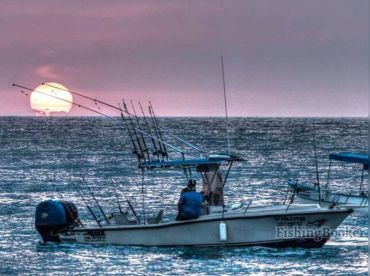 Viking Fishing Charters - NV