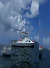 Fishing Machine Punta Cana