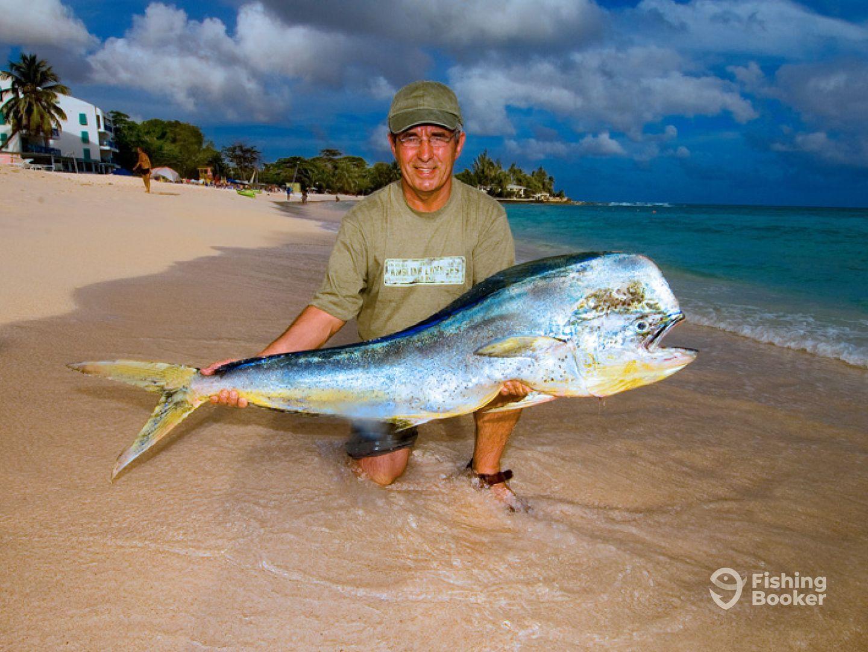 Cannon charters big game fishing bridgetown barbados for Big 5 fishing