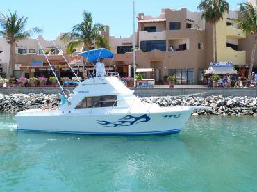 Cabo Sport Fishing–31' Californian