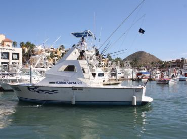 Cabo Sport Fishing Fleet – 35'