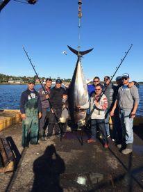 Chasintail Tuna Charters