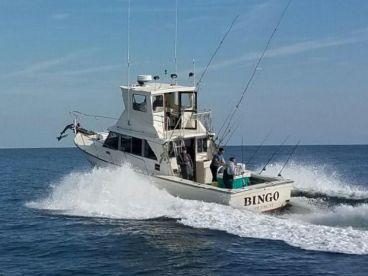 Bingo Fishing Charters
