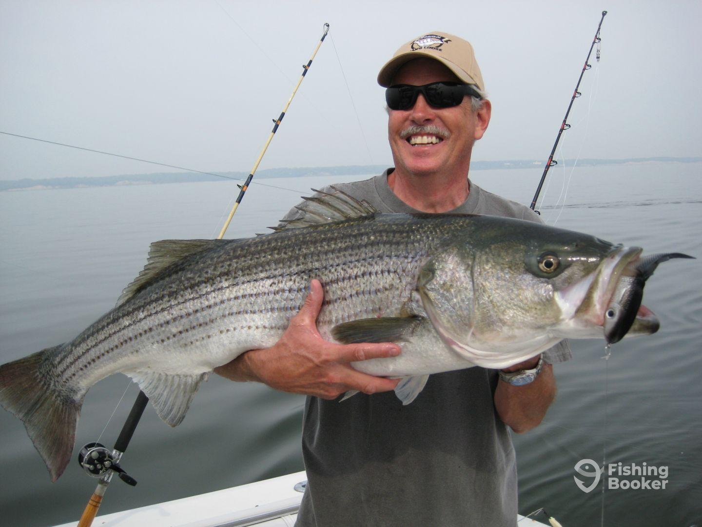 Chesapeake Adventures Sport Fishing