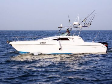 S.P Yacht Rentals – Dubai