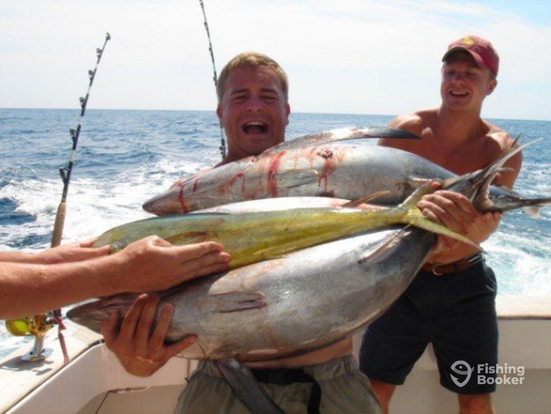 Arm Full of Tuna and Mahi Mahi