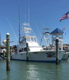 Restless Lady Charters 46'